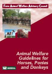 Cover Animal Welfare Guidelines for Horses, Ponies and Donkeys