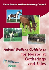 Cover Animal Welfare Guidelines for Horses at Gatherings and Sales